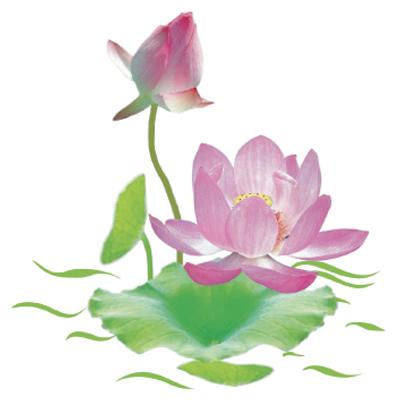 Kết quả hình ảnh cho icon day hoa