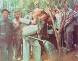 Trong Di chúc, Bác dặn trồng nhiều cây ở những nơi lưu niệm Người, không nên dựng bia đá, tượng đồng - Ảnh tư liệu